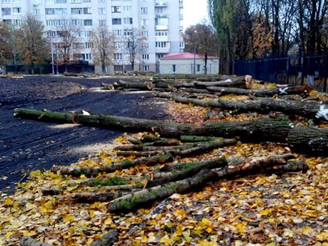 rekonstruktsiya_pioner_19