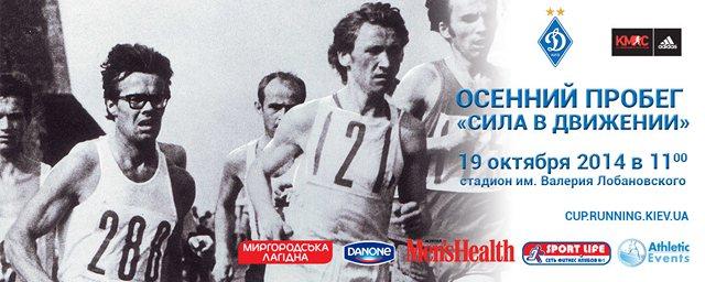 Dinamo-Run_2014